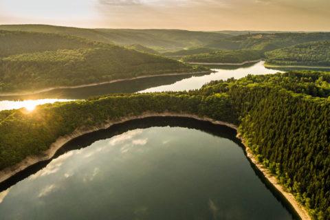Nationalpark Eifel, eldorado voor wild en wandelaar