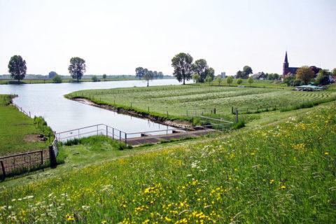 2 juni: Maas & Waal Marathon vanuit Appeltern