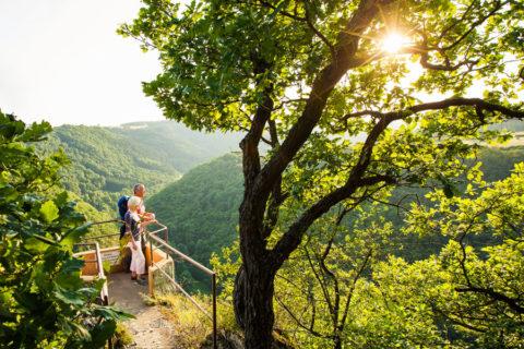 Door het dal van de Nahe, om bijzondere Wijnen en Natuurparken te ontdekken