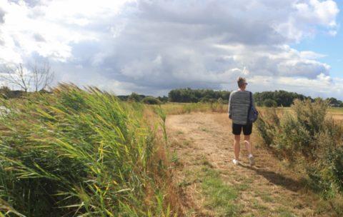 Wandelroute door Driestromenland in Westerwolde