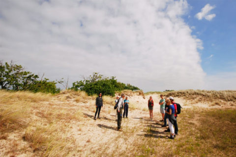 6 en 28 juli: Zomerwandelingen door 't Zwanenwater, Callantsoog