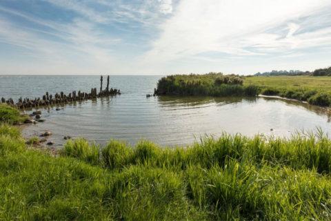 3, 10, en 17 aug: Tijdreizen op het Friese Oudemirdumerklif