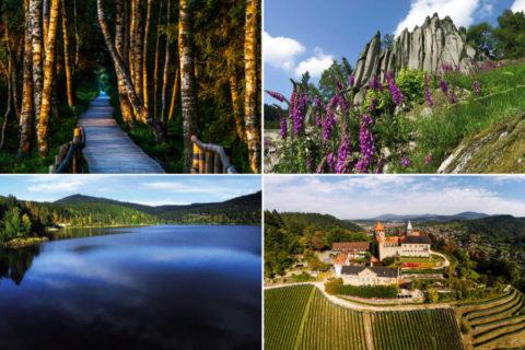 De 4 landschappen van de 'Murgleiter', premium wandelroute in het Zwarte Woud