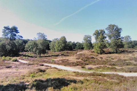 21 sept: Krabbentocht vanuit Bergen op Zoom