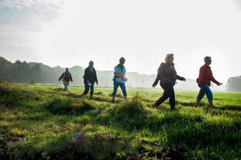12 okt: Klaverblad wandeling Noordenveld