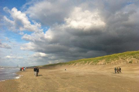 20 nov: Duin en Strandwandeling, Bloemendaal