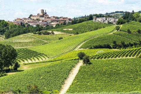 Fietsvakantie Italië door de wijngaarden van Piemonte
