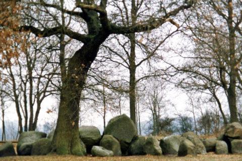 9 febr: Wandeling Westersche Veld en Acht van Amen
