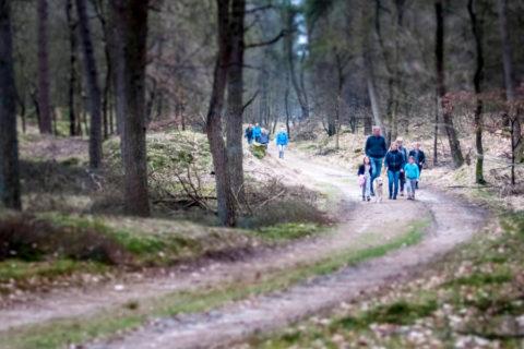 22 mrt: Taribush Lente Wandelfestival, Dwingelderveld
