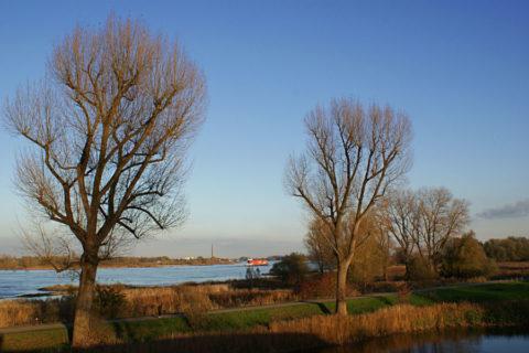 Jorden Klompenpad, door het land van Maas en Waal