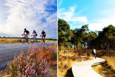 Wandelen en fietsen in het gemoedelijke Noord-Brabant