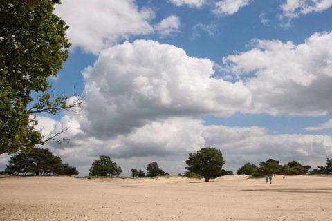 Wandelvakantie door de drie Drentse Natuurparken