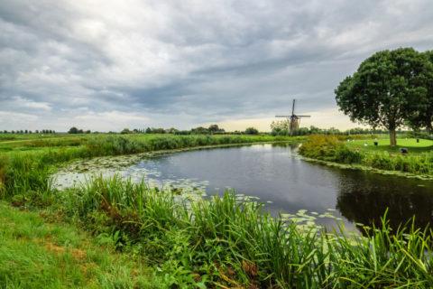Ontdek de 'Boerenlandpaden' in het Groene Hart van Holland