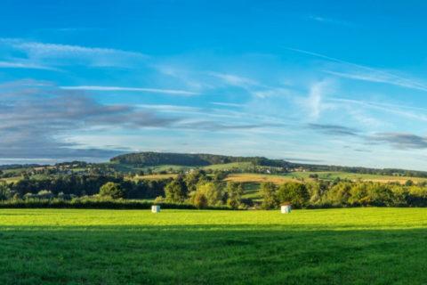 Deze nazomer 4 dagen wandelen door het Limburgse Heuvellandschap?