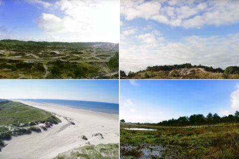 Struinen door de Schoorlse Duinen, het grootste duingebied van Nederland