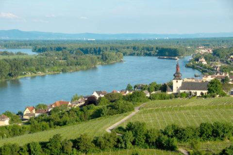 Fietsvakantie langs de Rijn van Straatsburg naar Mainz