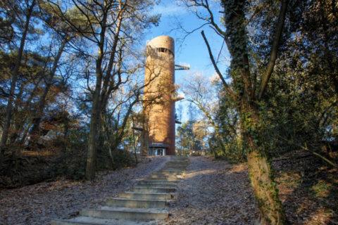 Uitzicht over het Drents-Friese-Wold vanaf de Bosbergtoren in Appelscha
