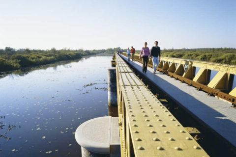 Wandelen over de Moerputtenbrug door natuurgebied Moerputten
