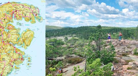 Op speurtocht naar de nieuwe 'Hoge Kusten Trail' van Zweden