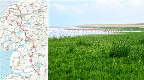 Het 'Jabikspaad' de Friese aanlooproute naar 'Santiago de Compostela'