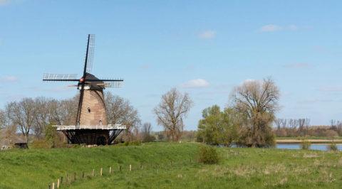 Cultuurhistorische wandelroute 'Groene Dijktocht' vanuit Haren, Noord-Brabant