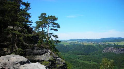 Op wandelavontuur van berghut naar berghotel door het Beierse Woud