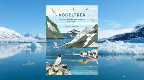 Het geheim van de wereldwijde Vogeltrek in 144 pagina's
