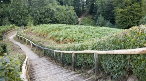 Wandelen rond de Duivelsberg, alsof je in het buitenland bent…