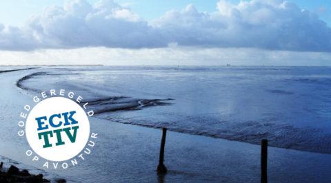 Sfeerproeven: een dag uit Fietsvakantie Gronings Hogeland en Schiermonnikoog