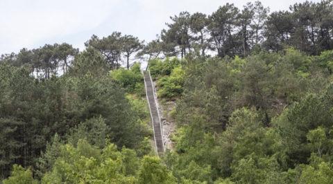 Duintoppentocht over de Schoorlse Duinen, de hoogste van Nederland