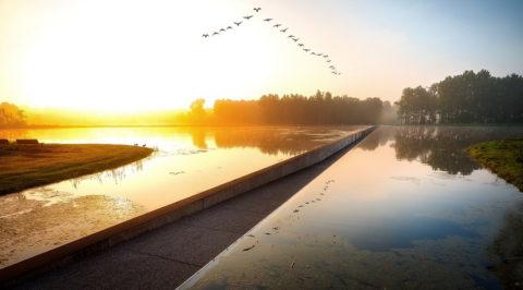 Zomerse tip: Fietsen door het water in het Belgische Bokrijk