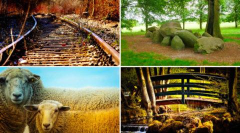 Het 'Wandelspoor': 25km over de oude spoordijk van Assen naar Gieten