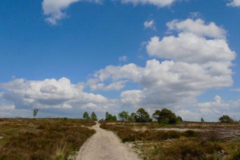Fietsvakantie Pieterpad van Hellendoorn naar Boxmeer