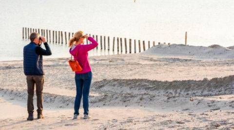 Ontdek Nationaal Park Nieuw Land met Oostvaardersplassen en Marker Wadden
