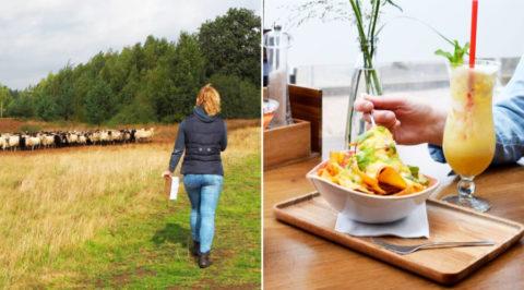 Drents culinair wandelarrangement omgeving Westerbork-Orvelte