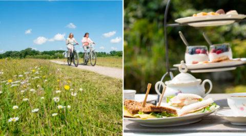 Zeven zomerse fietsroutes langs de theetuinen van de Achterhoek