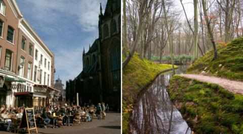 25 sept: De Teva 'Halve van Haarlem' Walk