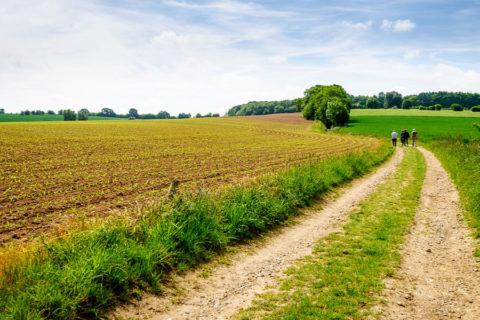 Wandelvakantie Zuid-Limburg over het Krijtlandpad
