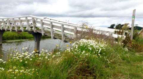 26 sept: Boerenland wandeltocht langs West-Friese dorpen